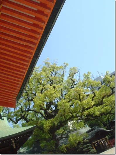 福岡の結婚式写真とビデオはブライダルビデオ.com