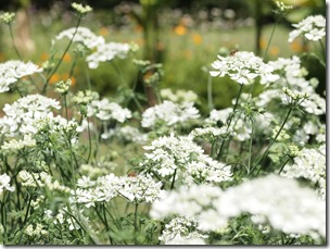 結婚式写真は福岡ブライダルビデオ.com