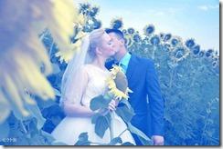 福岡の結婚式はシエルブルー